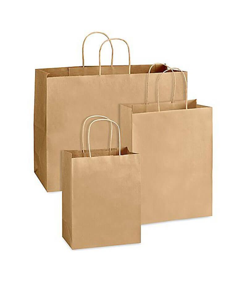 13bcadc425 10 x 14 x 3.5 Inch Kraft Paper Bag